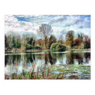 Autumn Lake side Postcard