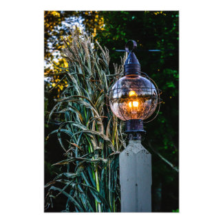 Autumn Lampost Aglow Photograph