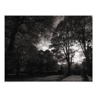Autumn Landscape Bute Park Cardiff Photographic Print