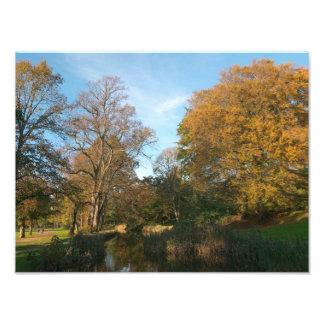 Autumn Landscape, Bute Park, Cardiff Photographic Print