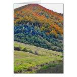 Autumn landscape cards
