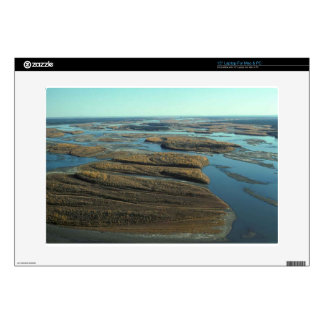 AUTUMN LANDSCAPE IN SWAMP WITH TREES IN FALL COLOR DECAL FOR LAPTOP