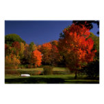 Autumn landscape, New England Poster