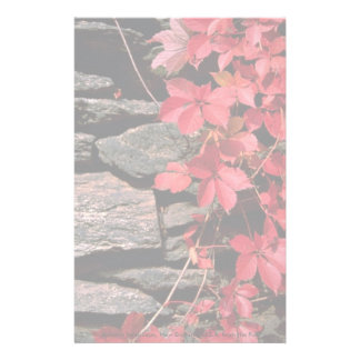 Autumn landscape, New England, U.S.A. from the For Personalized Stationery