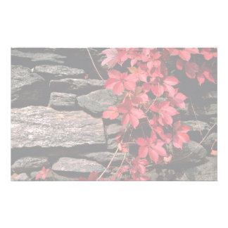 Autumn landscape, New England, U.S.A. from the For Stationery Paper
