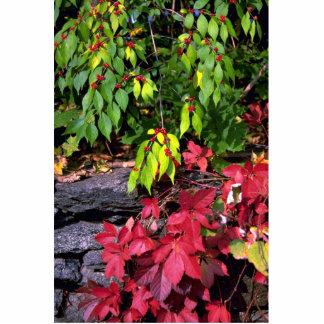 Autumn landscape, New England, U.S.A. Standing Photo Sculpture