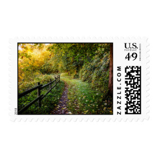 Autumn Landscape, Pathway In A Forest Postage
