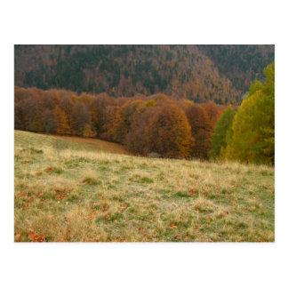 Autumn landscape postcard
