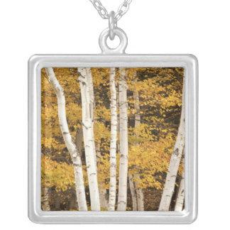 Autumn landscape, Vermont, USA Square Pendant Necklace