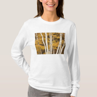 Autumn landscape, Vermont, USA T-Shirt