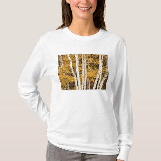 Autumn landscape, Vermont, USA T-Shirt