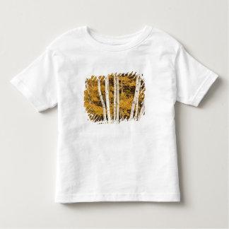 Autumn landscape, Vermont, USA Toddler T-shirt