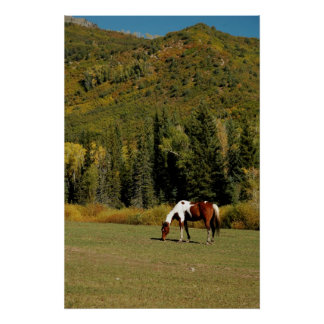 Autumn Landscape with Horse Poster