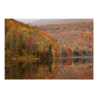 Autumn landscape with lake, Vermont, USA 2 Poster