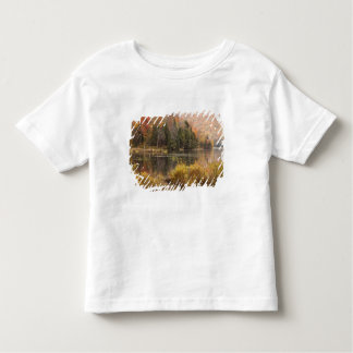 Autumn landscape with lake, Vermont, USA 3 Toddler T-shirt