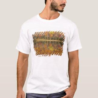 Autumn landscape with lake, Vermont, USA T-Shirt