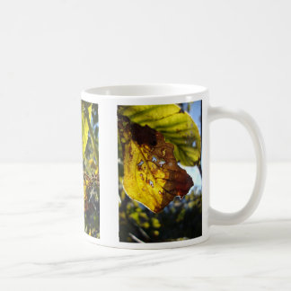 autumn leaf 3 coffee mug