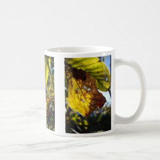 autumn leaf 3 coffee mugs