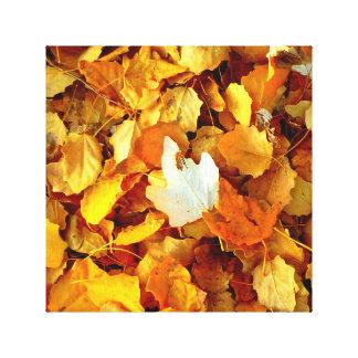 Autumn leaf. canvas print