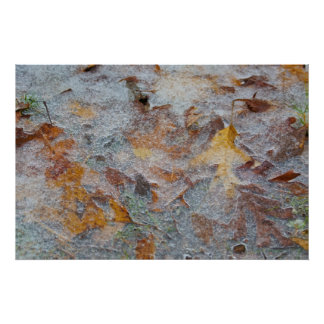 Autumn Leaf Collage in the Ice Poster