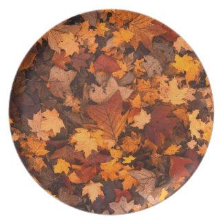 Autumn Leaf Fall Foliage Party Plates