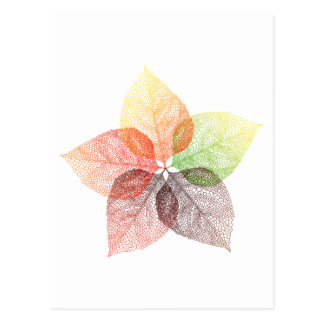 Autumn leaf flower post card