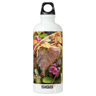 autumn leaf in early spring aluminum water bottle