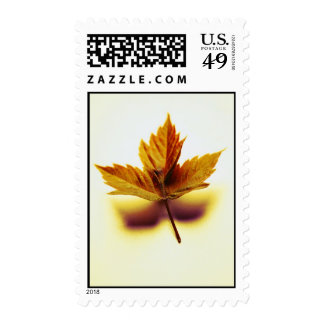 Autumn Leaf in Still Life Stamps