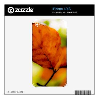Autumn leaf iphone 4/4s skin iPhone 4S decals