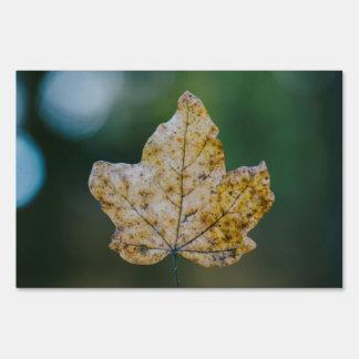 Autumn leaf macro yard signs