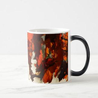 Autumn Leaf Morphing Mug