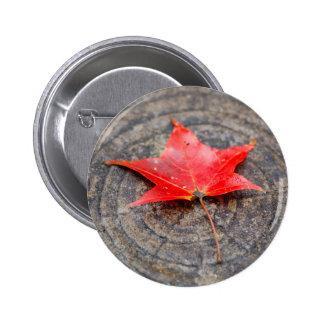 Autumn Leaf on Log Round Button