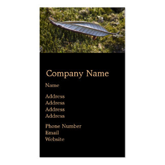 Autumn Leaf on Moss Double-Sided Standard Business Cards (Pack Of 100)