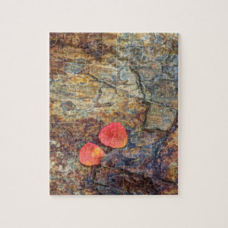 Autumn leaf on rock, California Jigsaw Puzzle