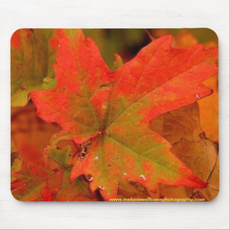 Autumn leaf pad mouse pad