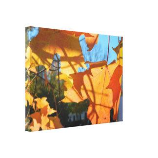Autumn Leaf Shadows Canvas Print