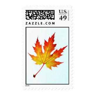 Autumn leaf stamp