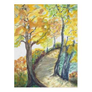Autumn Leaf Tree Fall Nature Forest Destiny Season Postcard
