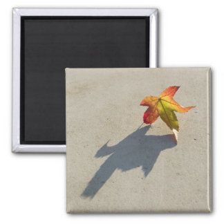 Autumn Leaf with Shadow 2 Inch Square Magnet