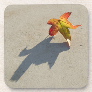 Autumn Leaf with Shadow Beverage Coaster