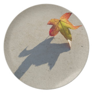 Autumn Leaf with Shadow Dinner Plate