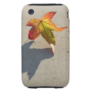 Autumn Leaf with Shadow iPhone 3 Tough Case