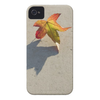 Autumn Leaf with Shadow iPhone 4 Cover