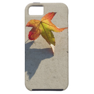 Autumn Leaf with Shadow iPhone SE/5/5s Case