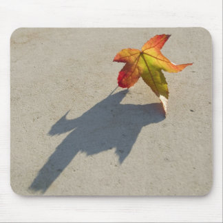Autumn Leaf with Shadow Mouse Pad
