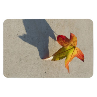 Autumn Leaf with Shadow Rectangular Photo Magnet