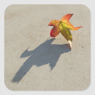 Autumn Leaf with Shadow Square Sticker