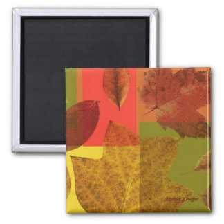 'Autumn Leaves' 2 Inch Square Magnet