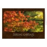 Autumn Leaves 6 Seasons Greetings Card