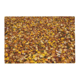 Autumn Leaves Abstract Placemat
